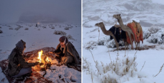 4 Images Capturing The Incredible Beauty Of Heavy Snowfall In Tabuk